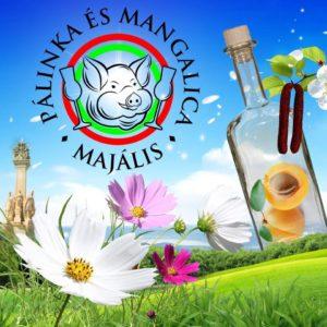 2018-aprilis-28-majus-1-vii-palinka-es-mangalica-majalis